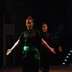 AMW_Choy Lee Fut Polska_Obchody Chińskiego Nowego Roku - Auditorium Maximum UJ- pokaz  Kung Fu