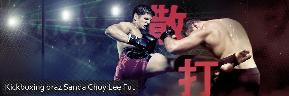 Kickboxing, Sanda, MMA